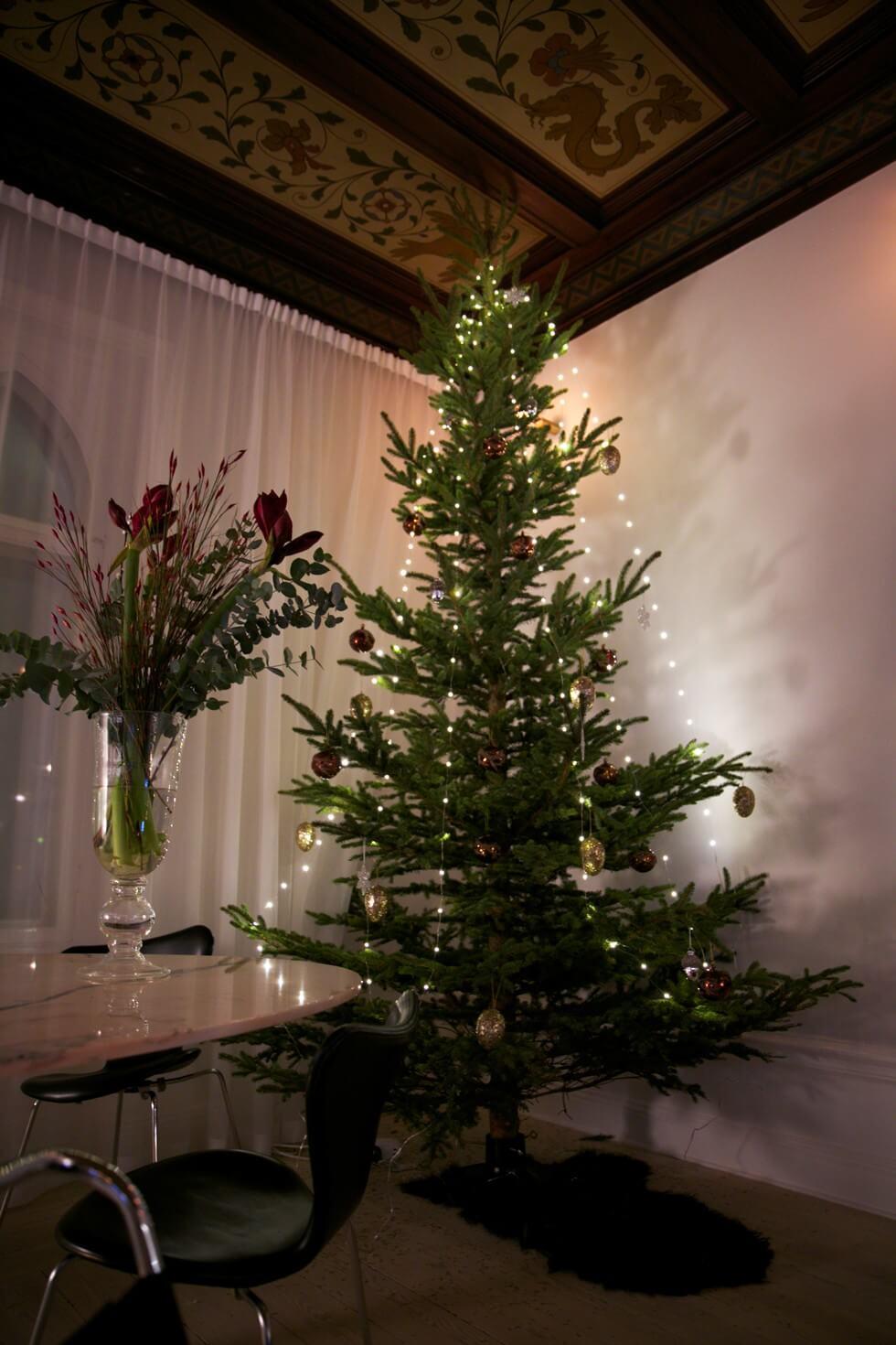 Julafton-Petra-Tungården-Lägenhet-980x653