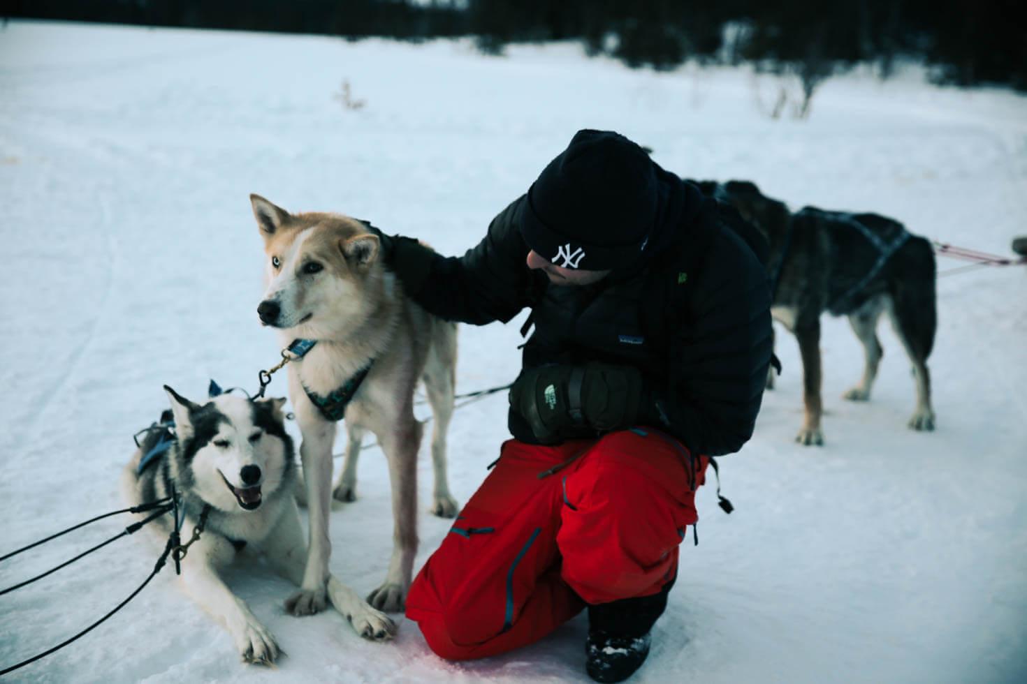 Åreguiden Hundspann Åre-8