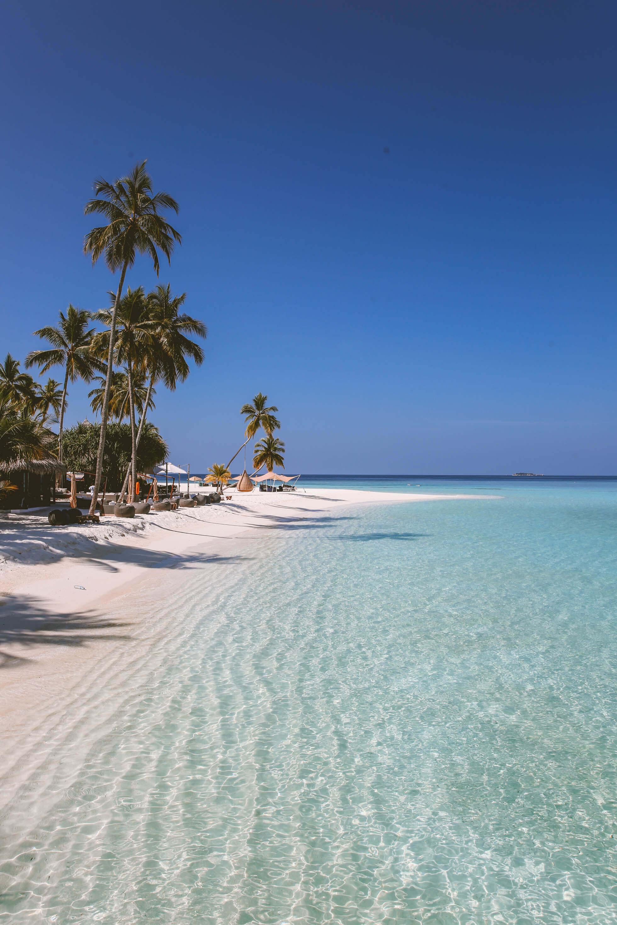 Maldiverna basta hotellet constance halaveli-36