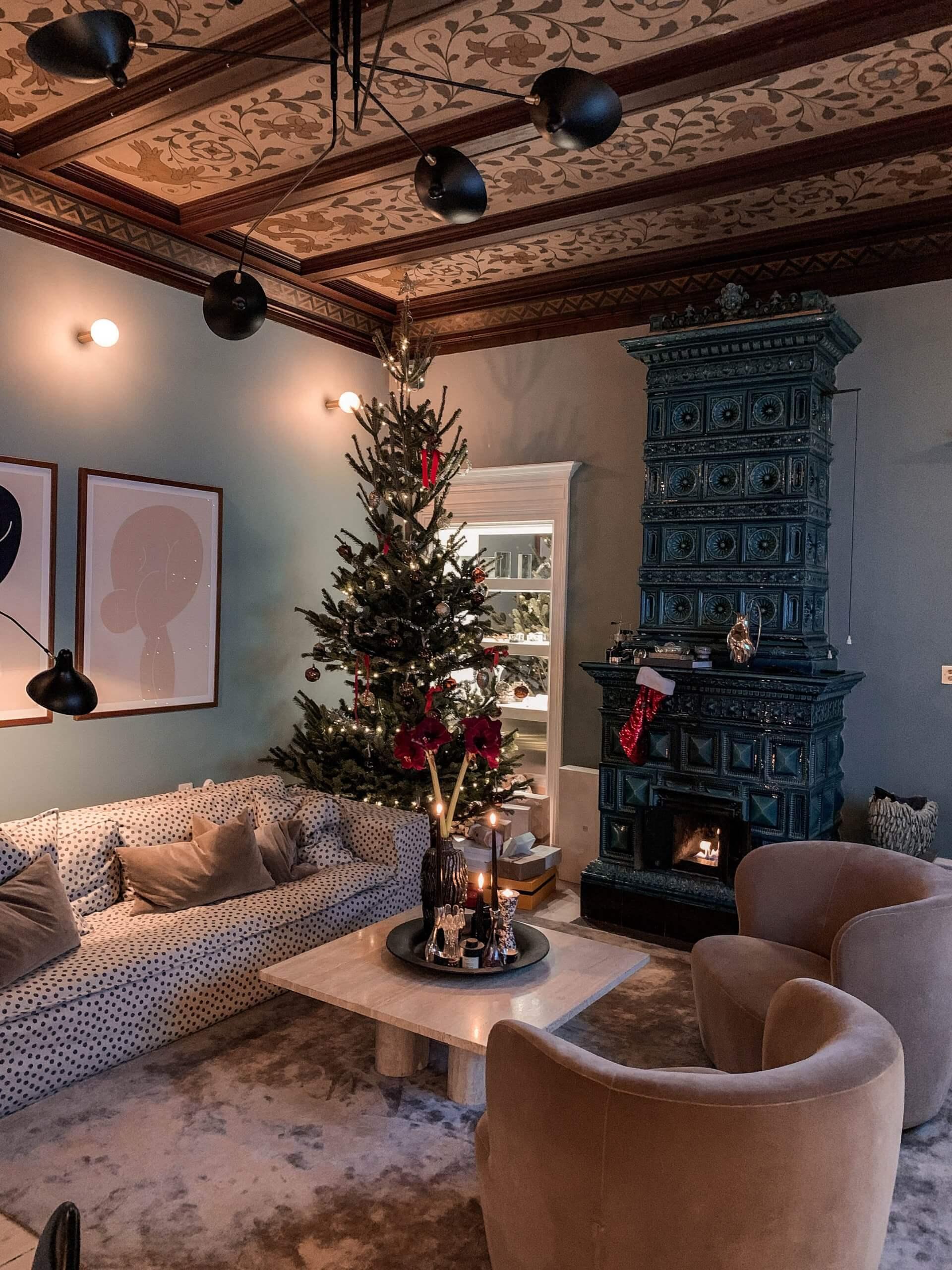 Petra Tungarden julafton-16